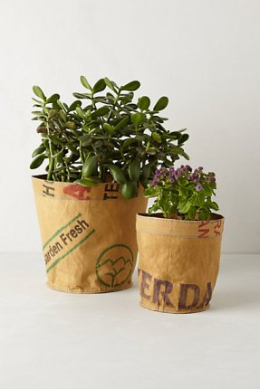 Reclaimed Tea Plant Planter