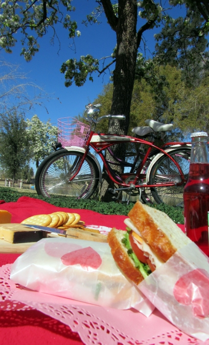 Valentines Picnic Date - Sandwiches
