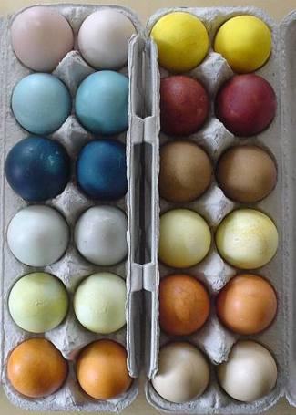 Natural Dye Easter Eggs via Eco Crazy Mom