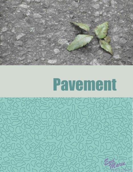 Concrete-and-Chlorophyll---Pavement