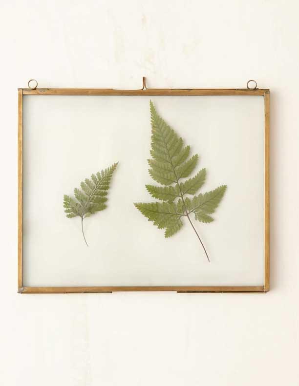 Brass-Specimen-Frame-from-Terrain